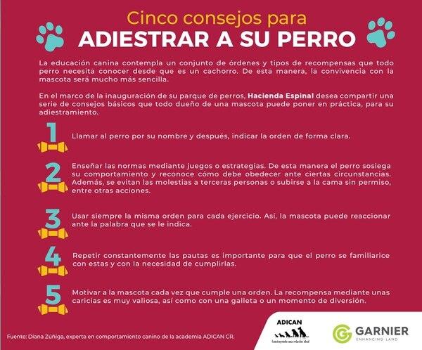 Consejos de adiestramiento de Diana Zúñiga, experta en comportamiento canino de la academia ADICAN CR.