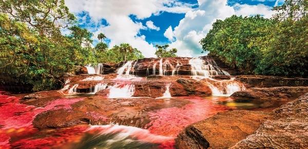 Caño Cristales, Colombia. Foto: Shutterstock.com