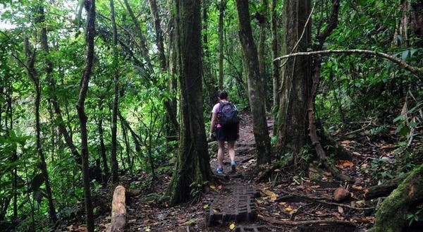 Estado de senderos en el Refugio Nacional de Vida Silvestre bahía Junquillal, en La Cruz de Guanacaste.